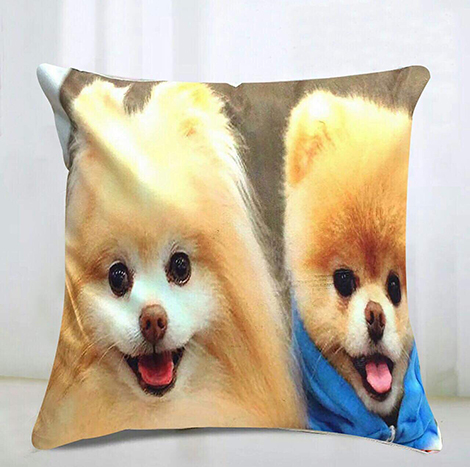 Memo Cute Dog Pillow