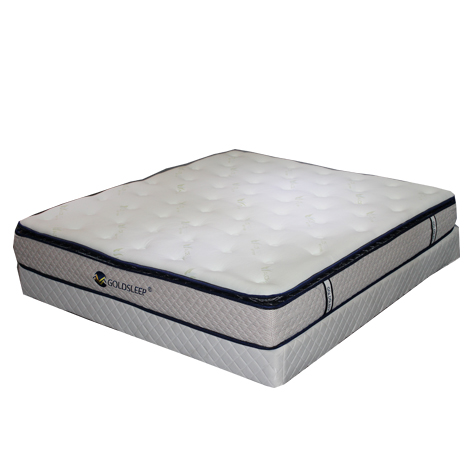 GOLDSLEEP GS-12 Memory Foam (QUEENSIZE)