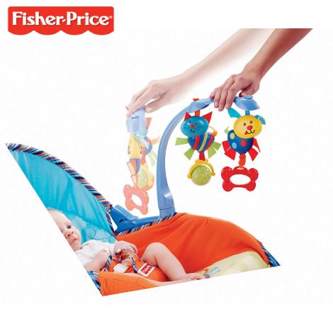 Fisher-Price Newborn-To-Toddler Portable Rocker ( P0107 )