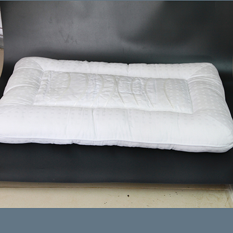 Amazing One Microbe worm Pillow (PLP90)