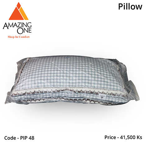 Amazing One Noble Silk Pillow(4 colour) (PLP48)