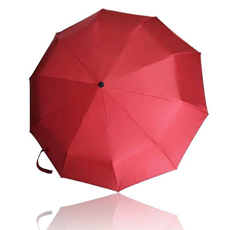 First Place Red Wine Automatic Umbrella